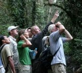 Sacha Lodge Wildlife Viewing Ecuador