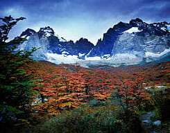 Autumn in torres-del-paine-np-chile-patagonia